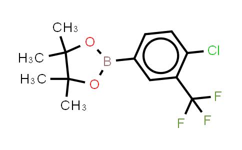 BP23957   445303-09-3   4-Chloro-3-trifluoromethylphenylboronic acid, pinacol ester
