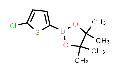 BP23985 | 635305-24-7 | 2-(5-Chlorothiophen-2-yl)-4,4,5,5-tetramethyl-1,3,2-dioxaborolane