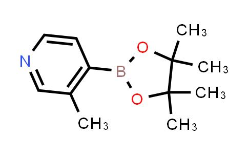 3-Methylpyridine-4-boronic acid pinacol ester