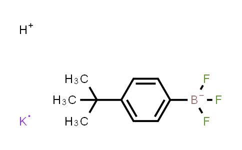 BP24036   423118-47-2   4-tert-butylphenyltrifluoroboric acid potassium salt
