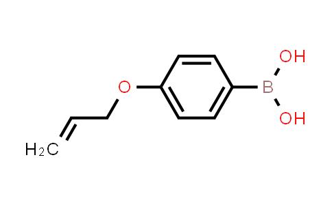BP24204   1117776-68-7   4-(allyloxy)phenylboronic acid