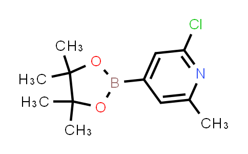 BP24233 | 697739-22-3 | 2-chloro-6-methyl-4-(4,4,5,5-tetramethyl-1,3,2-dioxaborolan-2-yl)pyridine