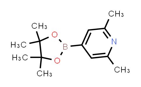 2,6-dimethyl-4-(4,4,5,5-tetramethyl-1,3,2-dioxaborolan-2-yl)pyridine