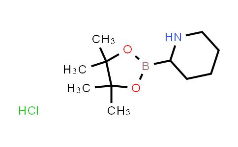 2-(4,4,5,5-tetramethyl-1,3,2-dioxaborolan-2-yl)piperidine hydrochloride