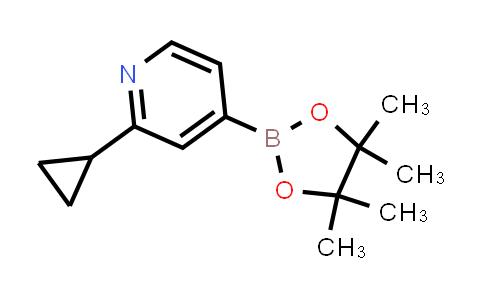 2-cyclopropyl-4-(4,4,5,5-tetramethyl-1,3,2-dioxaborolan-2-yl)pyridine