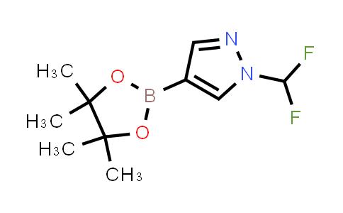 BP24798 | 1206640-82-5 | 1-(Difluoromethyl)-4-(4,4,5,5-tetramethyl-1,3,2-dioxaborolan-2-yl)-1H-pyrazole