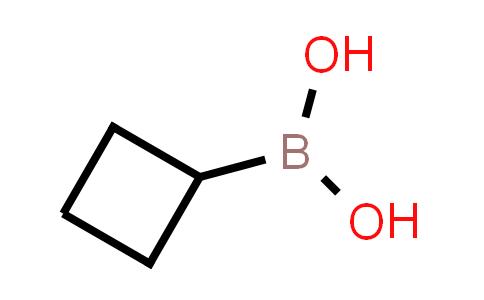 BP24820 | 849052-26-2 | Cyclobutylboronic acid