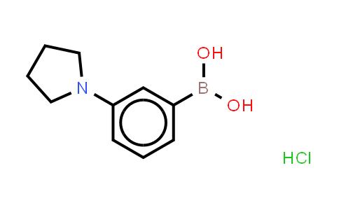3-(1-PYRROLIDINO)PHENYLBORONIC ACID HCL