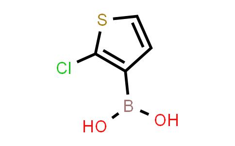 2-Chlorothiophene-3-boronic acid