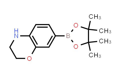 7-(4,4,5,5-tetramethyl-1,3,2-dioxaborolan-2-yl)-3,4-dihydro-2H-benzo[b][1,4]oxazine