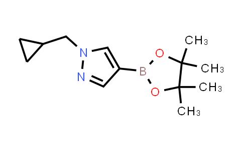 1-(CYCLOPROPYLMETHYL)-4-(4,4,5,5-TETRAMETHYL-1,3,2-DIOXABOROLAN-2-YL)-1H-PYRAZOLE