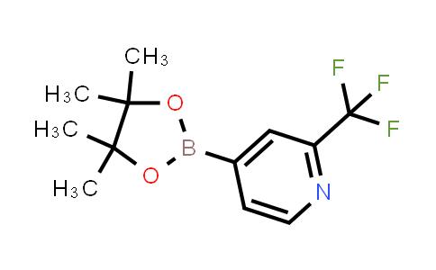 4-(4,4,5,5-Tetramethyl-[1,3,2]dioxaborolan-2-yl)-2- trifluoromethyl-pyridine