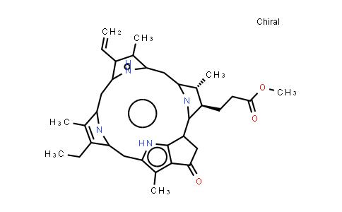 BP25373 | 6453-67-4 | Pyropheophorbide-a methyl ester