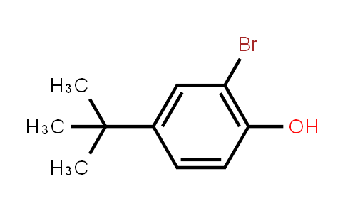2198-66-5 | 2-Bromo-4-tert-butylphenol