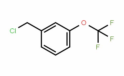 65796-00-1 | 3-(Trifluoromethoxy)benzyl chloride