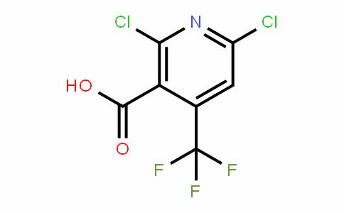 503437-19-2 | 2,6-Dichloro-4-(trifluoromethyl)nicotinic acid