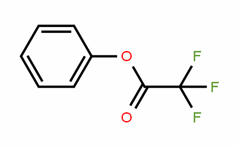 500-73-2 | Phenyl trifluoroacetate