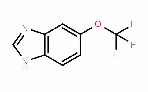 911825-64-4 | 5-(Trifluoromethoxy)-1H-benzimidazole