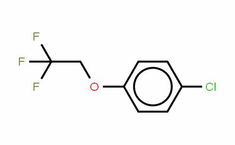 80054-80-4 | 4-(2,2,2-Trifluoroethoxy)chlorobenzene