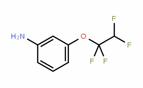 831-75-4 | 3-(1,1,2,2-Tetrafluoroethoxy)aniline
