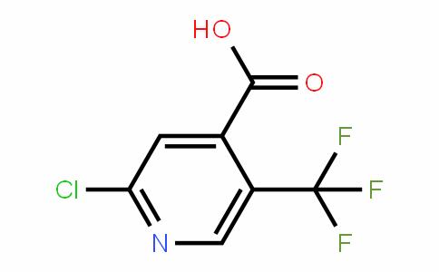 505084-58-2 | 2-氯-5-三氟甲基吡啶-4-甲酸