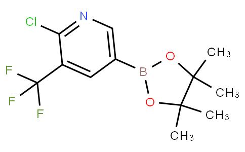741709-67-1 | 2-Chloro-5-(4,4,5,5-tetramethyl-1,3,2-dioxaborolan-2-yl)-3-(trifluoromethyl)pyridine