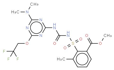 Triflusulfuron-methyl