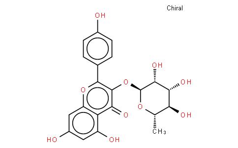 KAEMPFEROL 3-O-GLUCORHAMNOSIDE