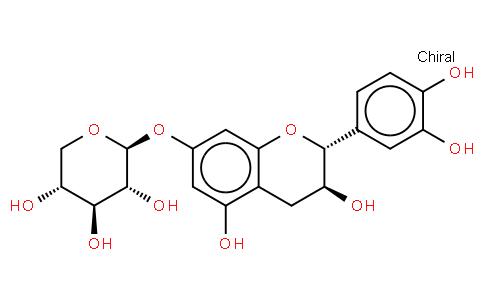 Catechin 7-xyloside