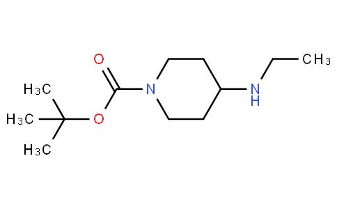81728 - 1-Boc-4-Ethylaminopiperidine | CAS 264905-39-7