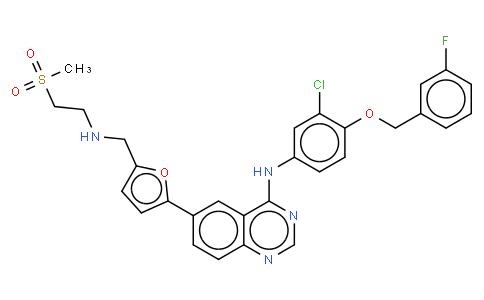 17022807 - Lapatinib | CAS 231277-92-2