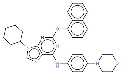 52519 - Purmorphamine | CAS 483367-10-8